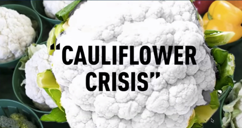 cauliflower-crisis-best-image