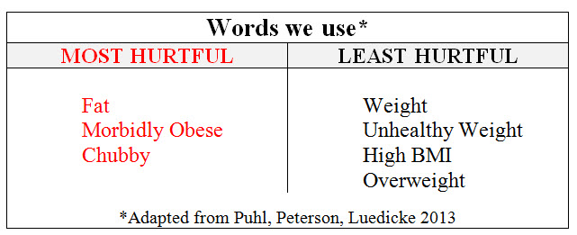 words we use obesity bias N4NN 2017 11-27_14-57-23